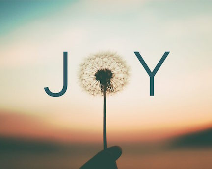 The Joy Journey